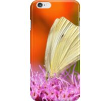 cabbage butterfly on orange iPhone Case/Skin
