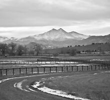 Twin Peaks Mt Meeker and Longs Peak BW Country by Bo Insogna