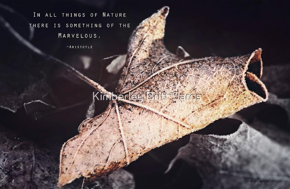Something of the Marvelous by KBritt