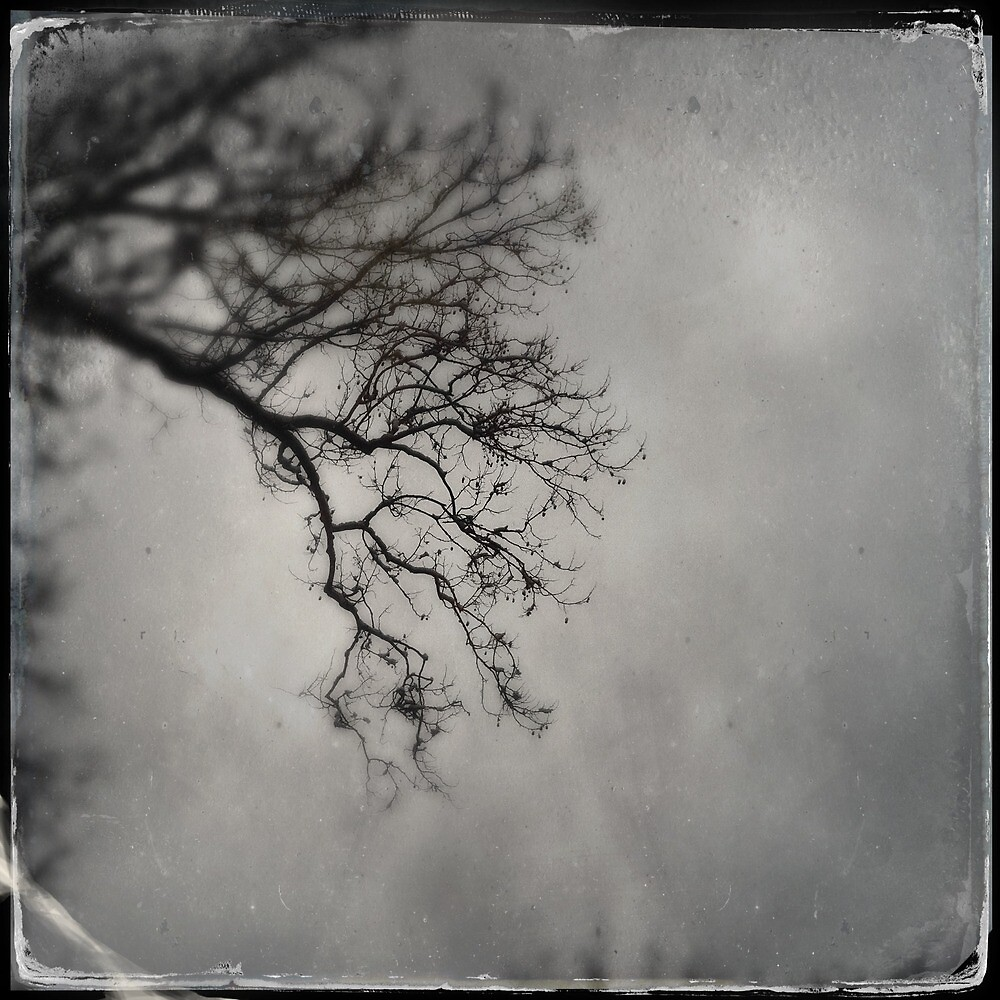 Winter by hipstamatic