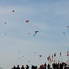 Capital Kite Day by RESPECTMAXIMUS