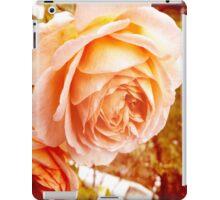 Rosy rose iPad Case/Skin