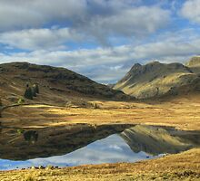 Blea Tarn by VoluntaryRanger