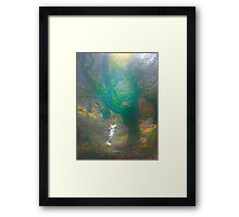 The Dingley Dell of Sugar Loaf Mountain Framed Print