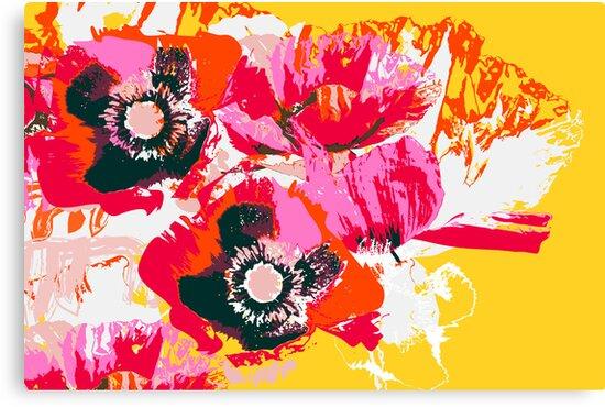 poppy wild meadow image by Veera Pfaffli
