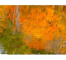 The watery easel of October Photographic Print