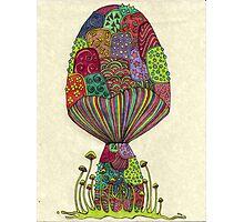 Dream Mushroom Photographic Print