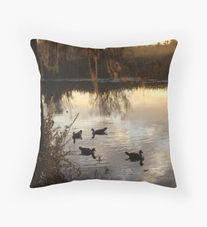 MUSCOVY DRAKES ON ECONFINA CREEK Throw Pillow