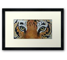 Tiger-The Last Stare-TigerTLS-001 Framed Print