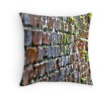Life Of Brick Throw Pillow