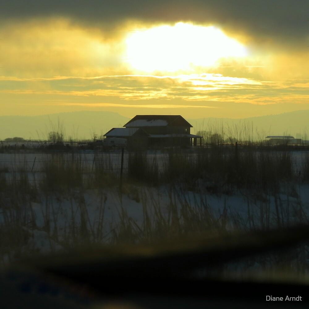 Determined Sun..Outside Jentura, Oregon by Diane Arndt