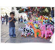 Oaxaca City Zookeeper Poster