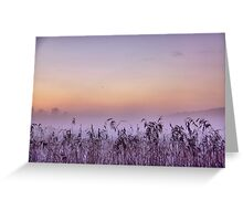 Mist rising Greeting Card