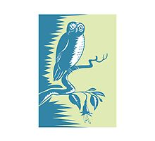 Owl on Branch Retro  by patrimonio