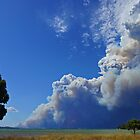 Dunalley Fire - viewed from Saltwater River, Tasmania, Australia by PC1134