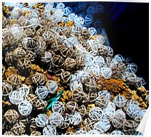 Odd Jumble - Plastic Spheres Poster