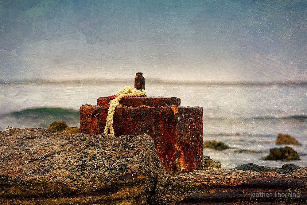 """"""" Coastal Relics """" by Heather Thorning"""
