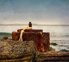 """ Coastal Relics "" by Heather Thorning"