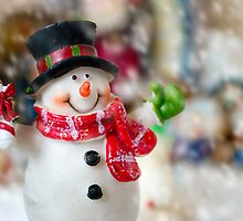Frosty Reception by Paul-M-W