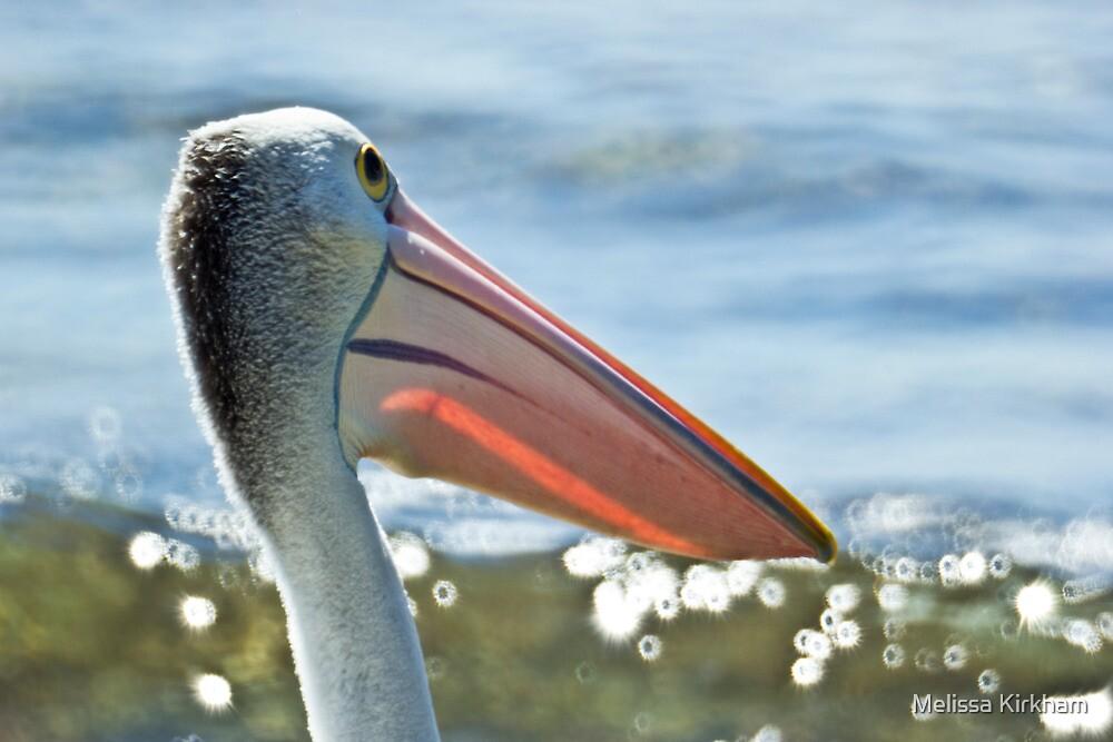 Ulladulla Pelican's by Melissa Kirkham