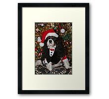 Charlie Girl Christmas 2014 Framed Print