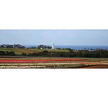 Table Cape Lighthouse and Van Dieman's Tulip Company- Wynyard, TAS Photographic Print
