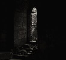 Kirkstall Abbey Chapter House (B&W) by Tim Waters