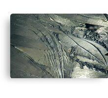 Contrast on Ice - II Canvas Print