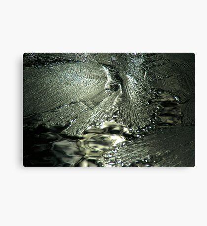 Contrast on Ice - I Canvas Print
