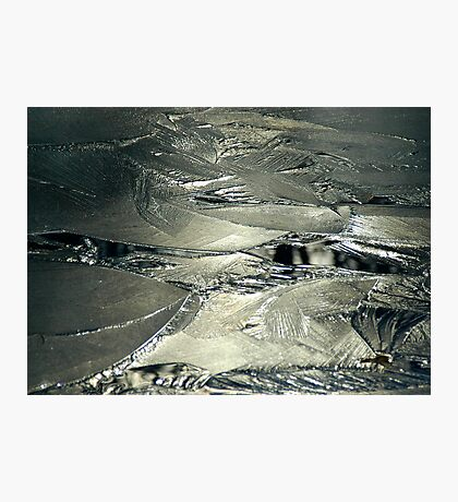 Contrast on Ice - III Photographic Print