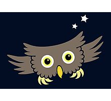 Flying Owl VRS2 Photographic Print