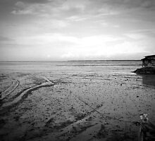 Deserted Shore by silentstead