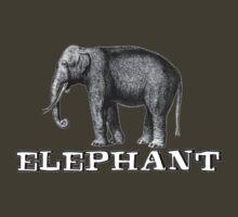 Elephant. by jummpy