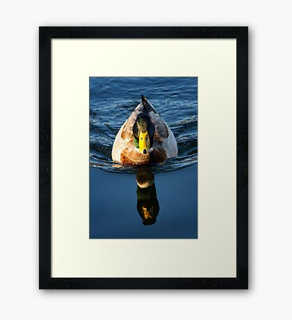 Body To Reflection ... What Happened To The Rest Of You? Framed Print