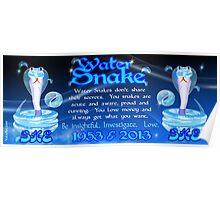 Chinese Zodiac water snake 1953 & 2013  Poster