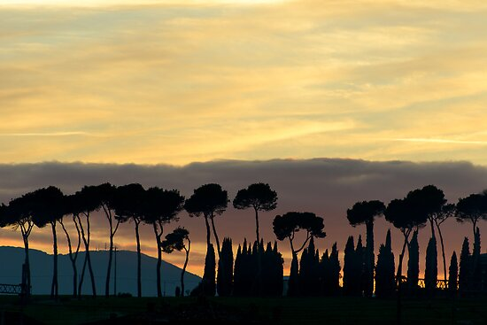 Sunset from Pineta, Lago Trasimeno by Andrew Jones