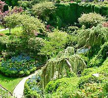 Butchart Gardens BC Canada by AnnDixon