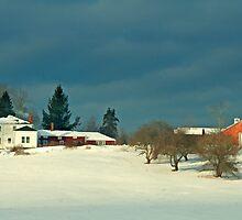 Winter Farm , Berstel Mills Maine by Dave  Higgins