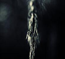 Alone in the dark..I by Bob Daalder