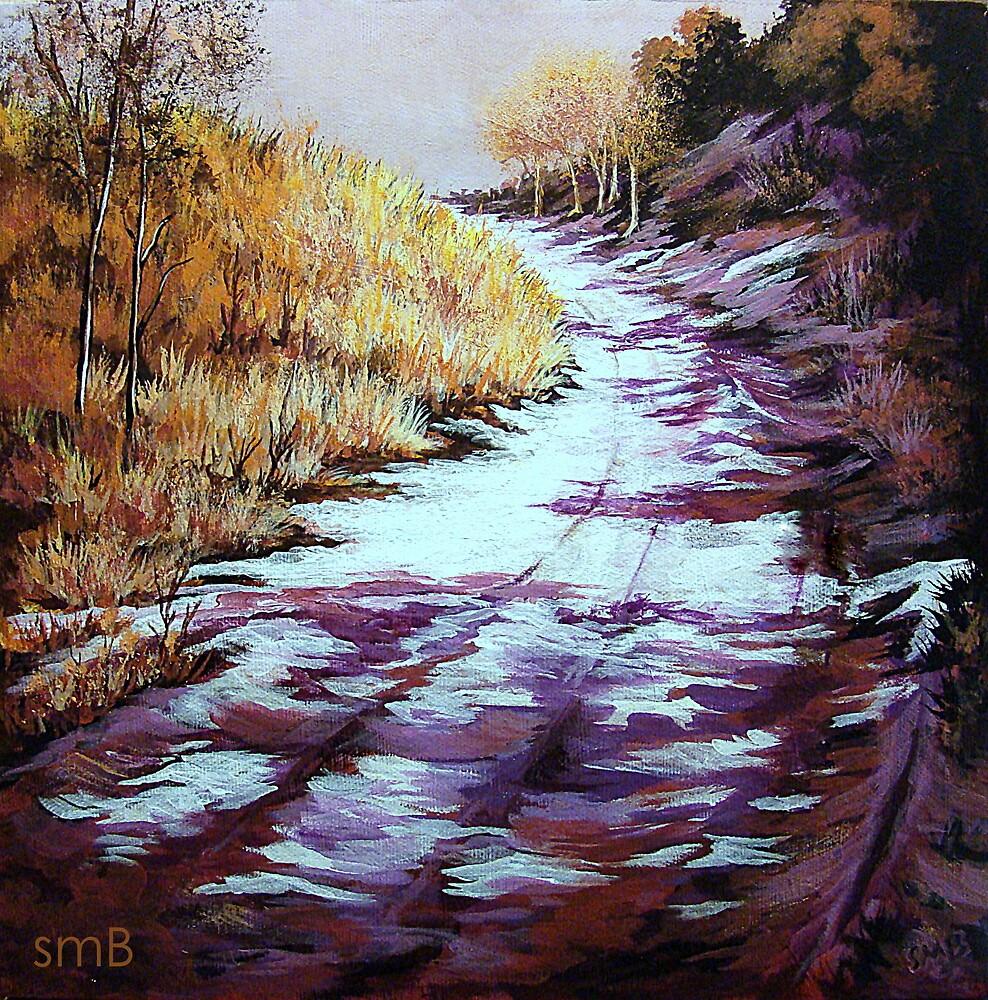 Shadows by Susan Bergstrom