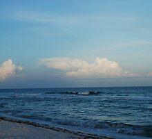 Evening ocean  by EpeegoddessRay