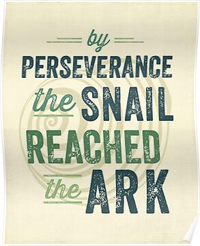 Perseverance by Dallas Drotz
