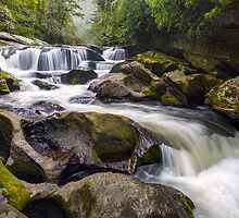 Chattooga River Potholes Waterfall Highlands NC - The Artist's Hand by Dave Allen