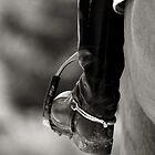 The Rider by Ian Thomas