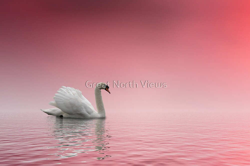 Drifting in Dreamland by Great North Views