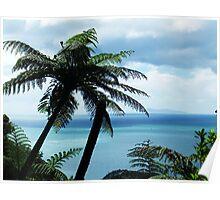 Manunganui Palm Poster