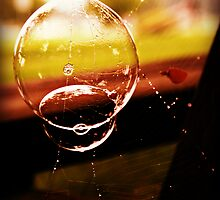 Bubble in a spiderweb by Estell