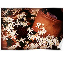 Overflowing flowers Poster