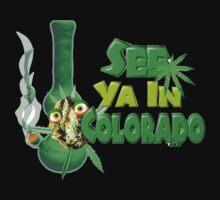 See ya in Colorado  by Valxart