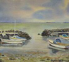 Boat harbour 2, Williamstown by Virginia  Coghill